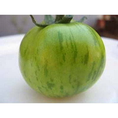 tomaten green zebra gr ne tomate saatgut bestellen. Black Bedroom Furniture Sets. Home Design Ideas
