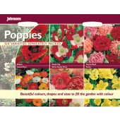 Papaver_Kollektion